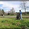 在公園裡散步