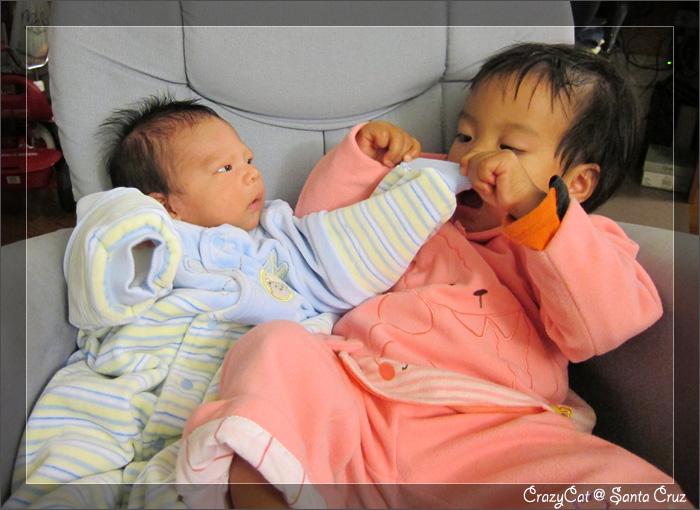 12/23 Q寶:「不過就是隻手嘛,姊姊你的表情有必要這麼誇張嗎?」