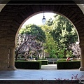 美麗的 Stanford 校園一角