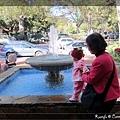 噴水池玩水