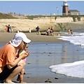 浪花沖上岸來好像軟軟白白的棉花