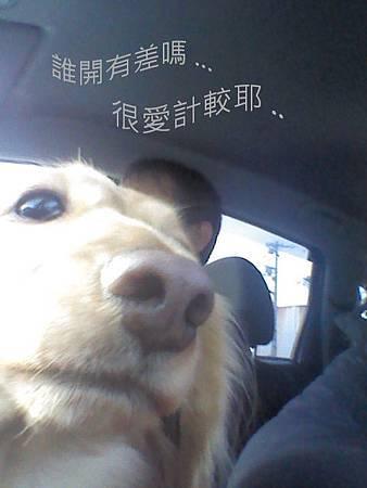 HANA  在車上