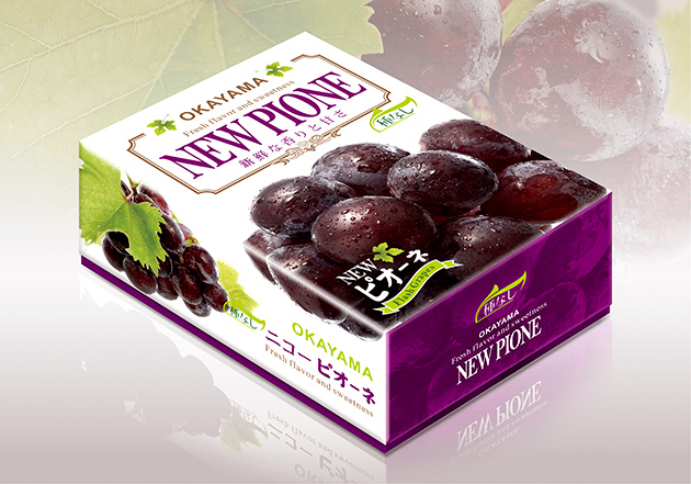 水果禮盒設計