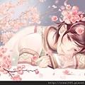 桃花CherryBlossom