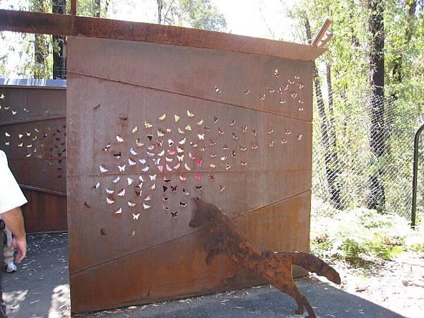 20090206 John Braithwaite帶領大家到國家公園尋找野生動物