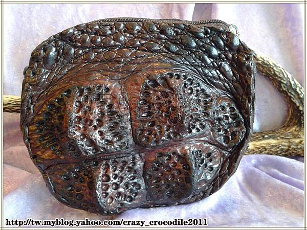 【品名】大鱷魚皇冠小腰包 『已售出』