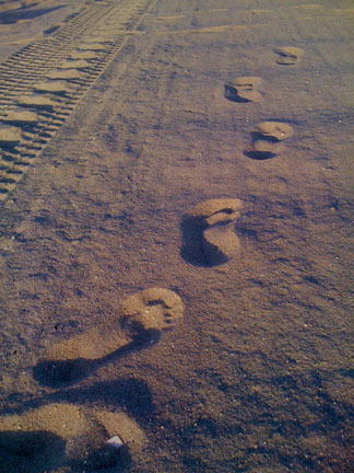 my foot prints.jpg
