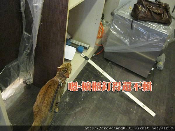 阿財巡工地 (7).jpg