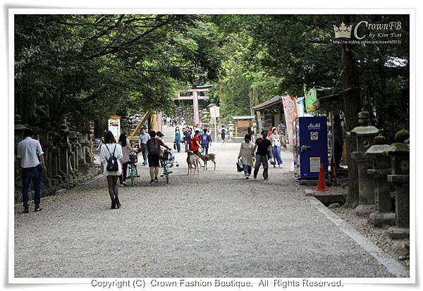 _MG_8547奈良.JPG
