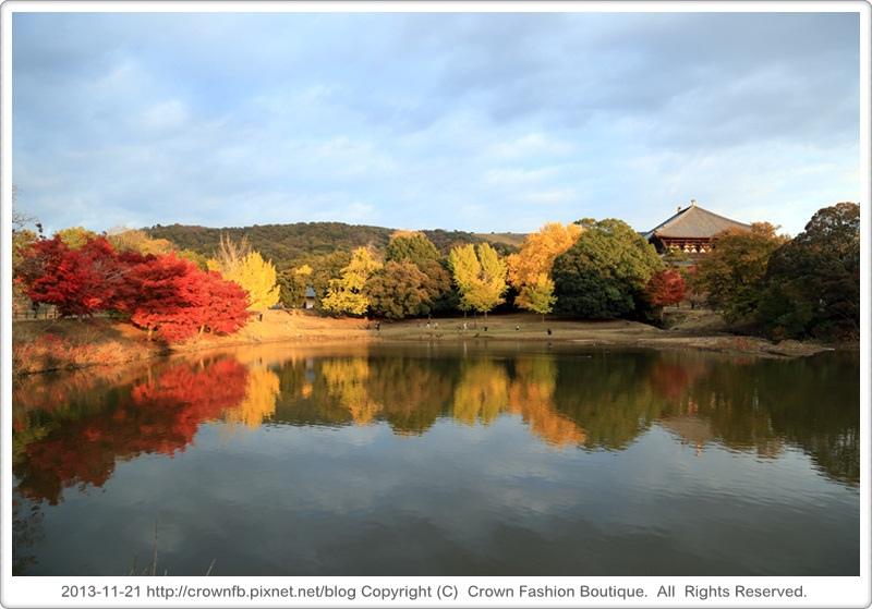 IMG_0326 2013-11-21奈良.JPG