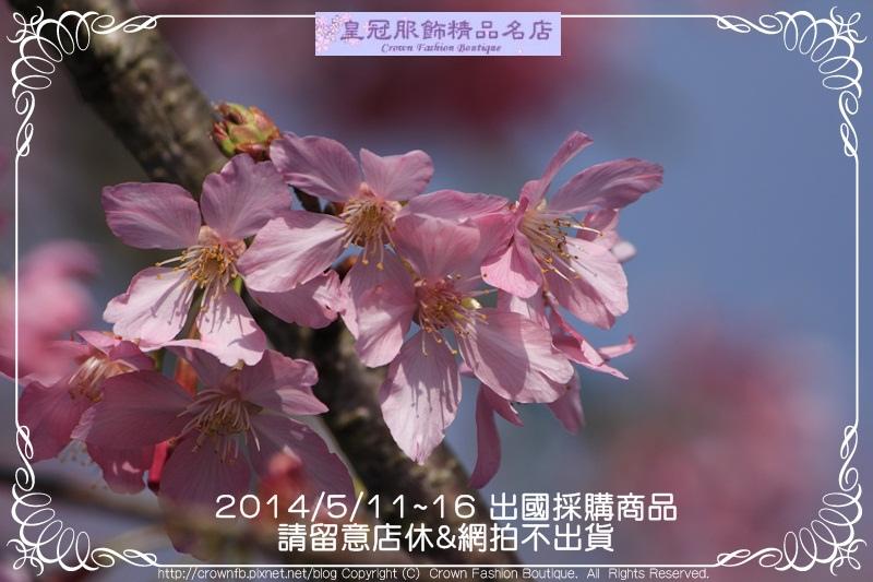 _MG_7148 2014-5-11-16店休.JPG
