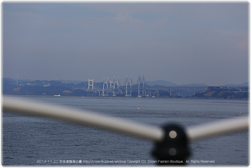 IMG_0078a 2014-11-20宇多津.JPG