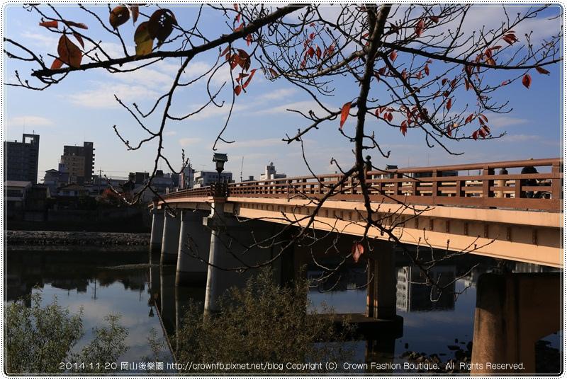 IMG_5482 2014-11-20岡山後樂園.JPG