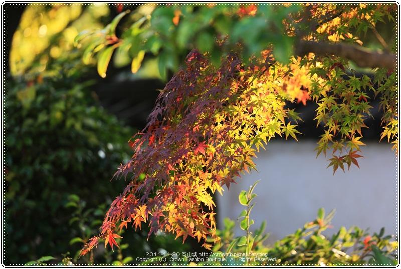 IMG_5872a 2014-11-20岡山城.JPG