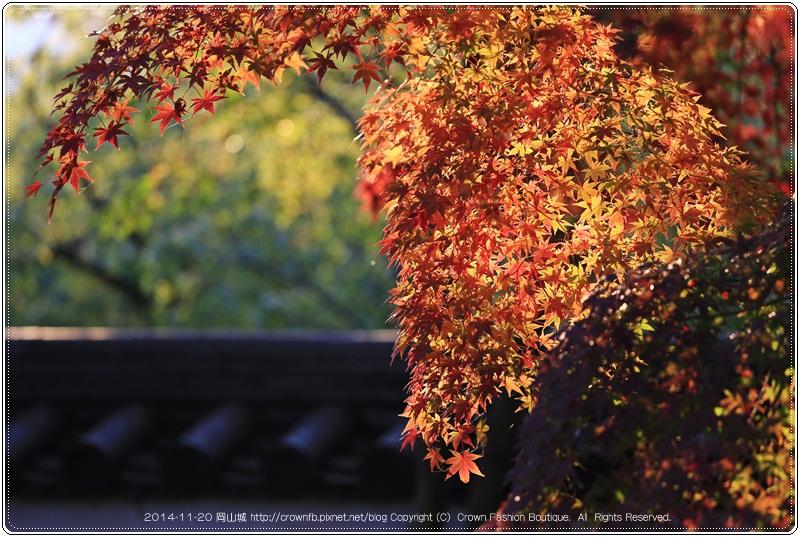 IMG_5874 2014-11-20岡山城.JPG