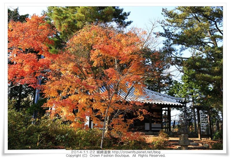 IMG_6628 2014-11-22城崎溫泉.JPG