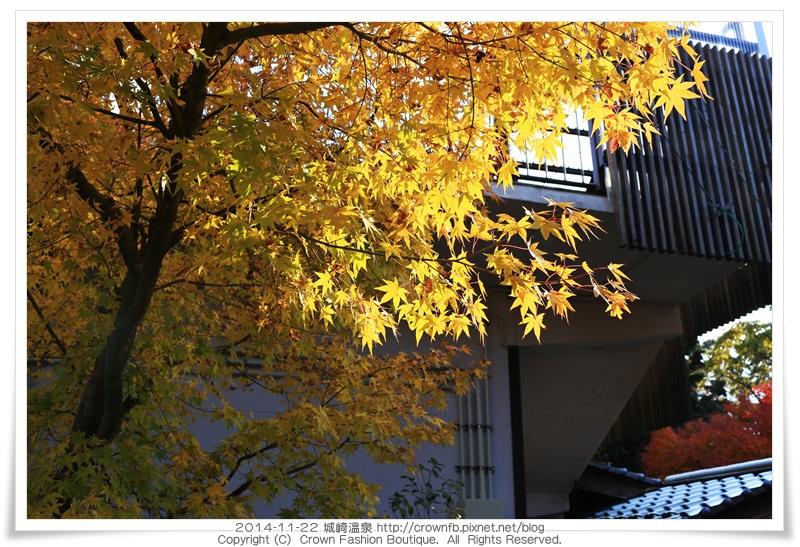 IMG_6629 2014-11-22城崎溫泉.JPG