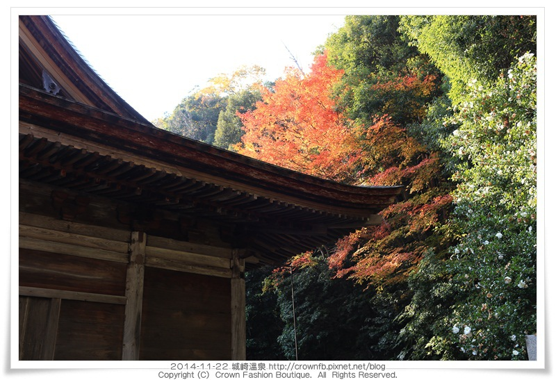 IMG_6636 2014-11-22城崎溫泉.JPG