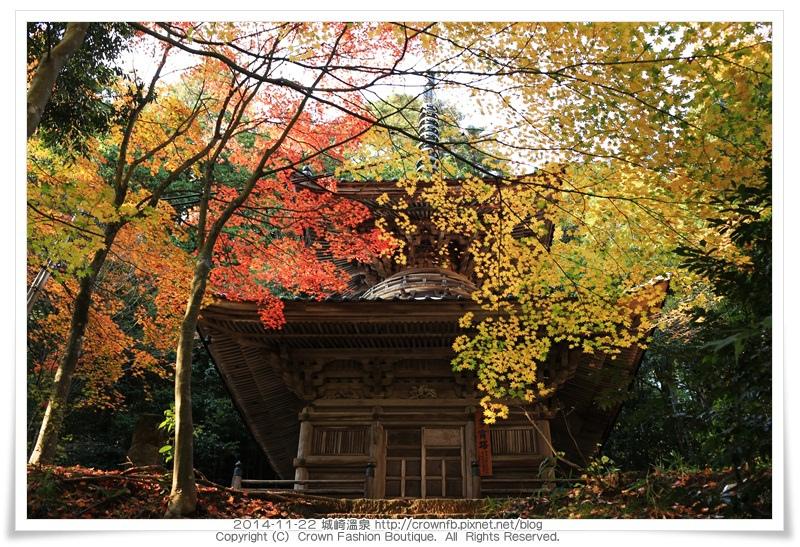 IMG_6643 2014-11-22城崎溫泉.JPG