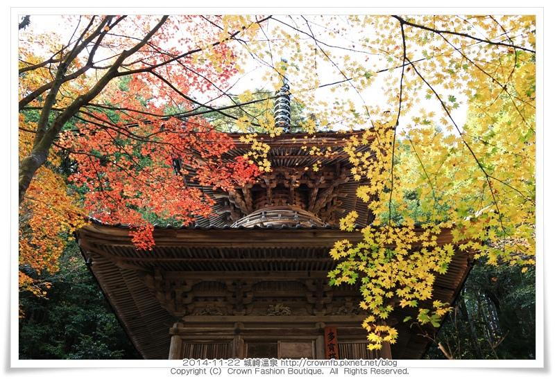 IMG_6644 2014-11-22城崎溫泉.JPG