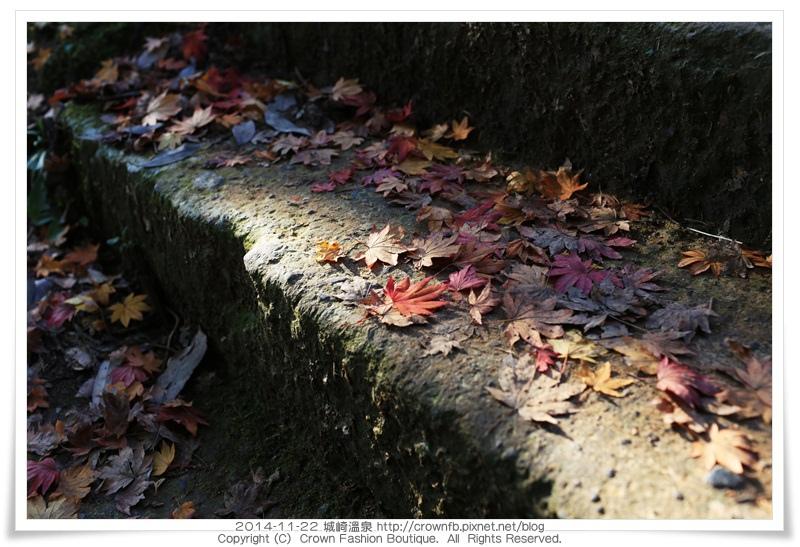 IMG_6646 2014-11-22城崎溫泉.JPG