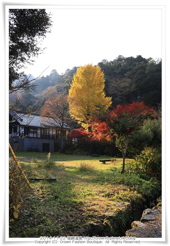 IMG_6689 2014-11-22城崎溫泉.JPG