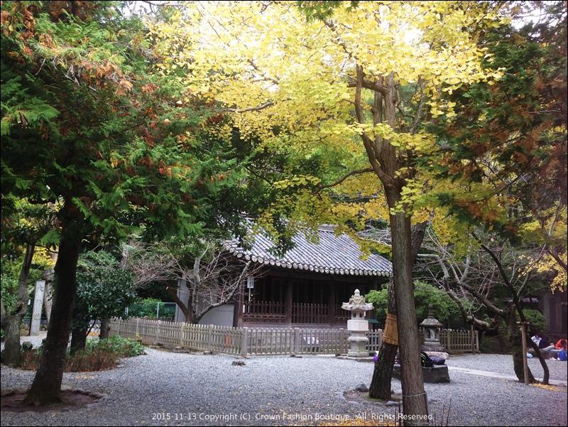 11-13IMG_6938 (2) hamakura.JPG