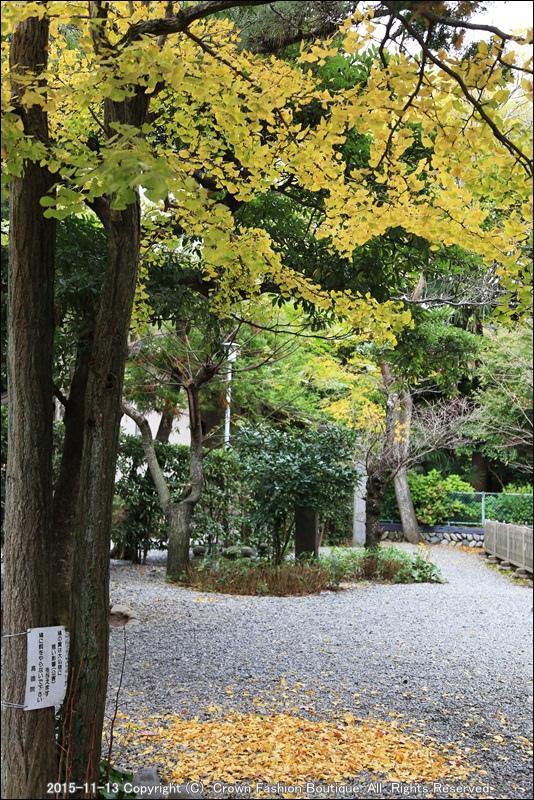 IMG_7427 Hamakura.JPG