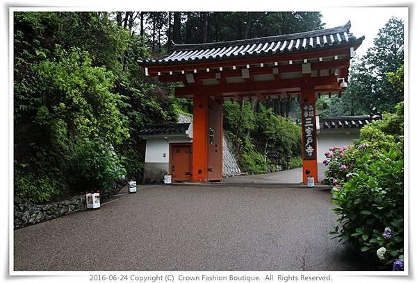 IMG_1408 2016-6-24日本.JPG