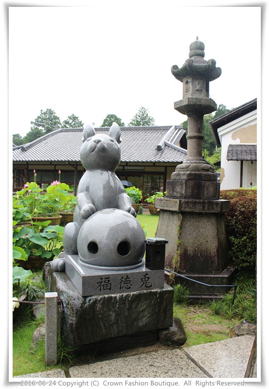IMG_1439 2016-6-24日本.JPG