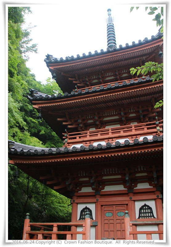 IMG_1460 2016-6-24日本.JPG