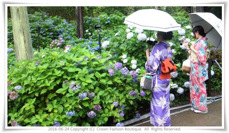 IMG_1535 2016-6-24日本.JPG