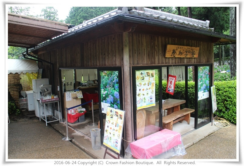 IMG_1564 2016-6-24日本.JPG
