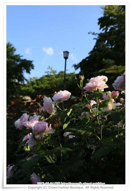 9-1 箱根 IMG_8948.JPG