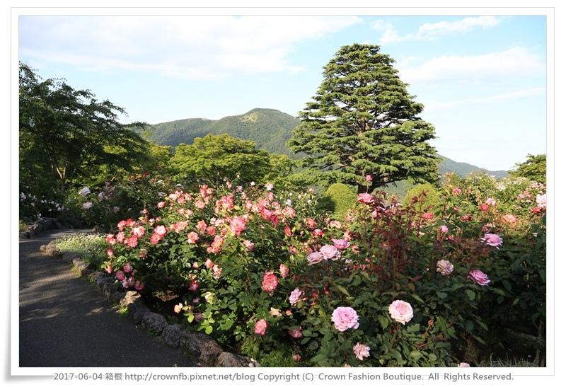 9-1 箱根 IMG_8946.JPG
