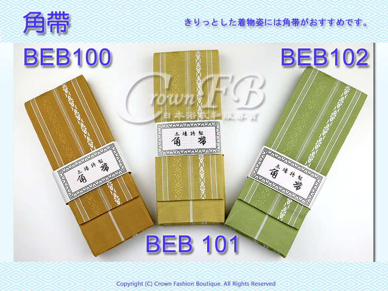BEB100 101 102 800 600.jpg
