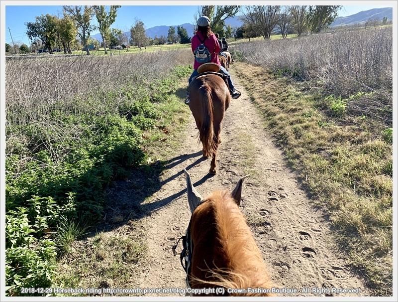 IMG_5957Horseback riding.jpg