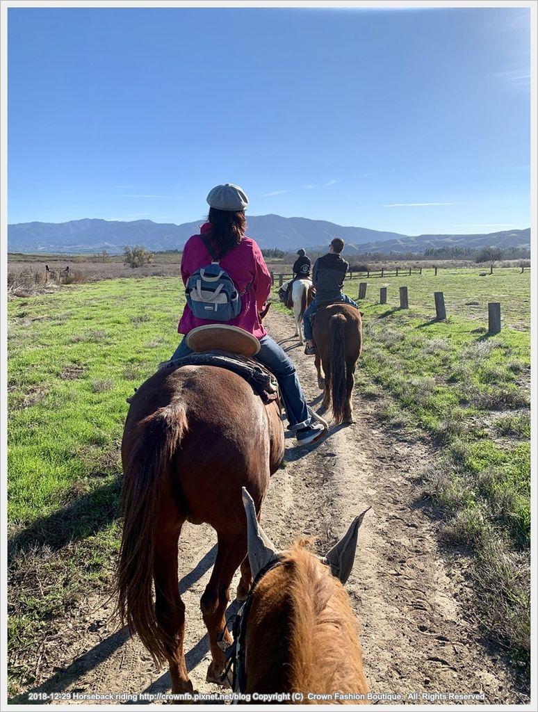 IMG_6002Horseback riding.jpg