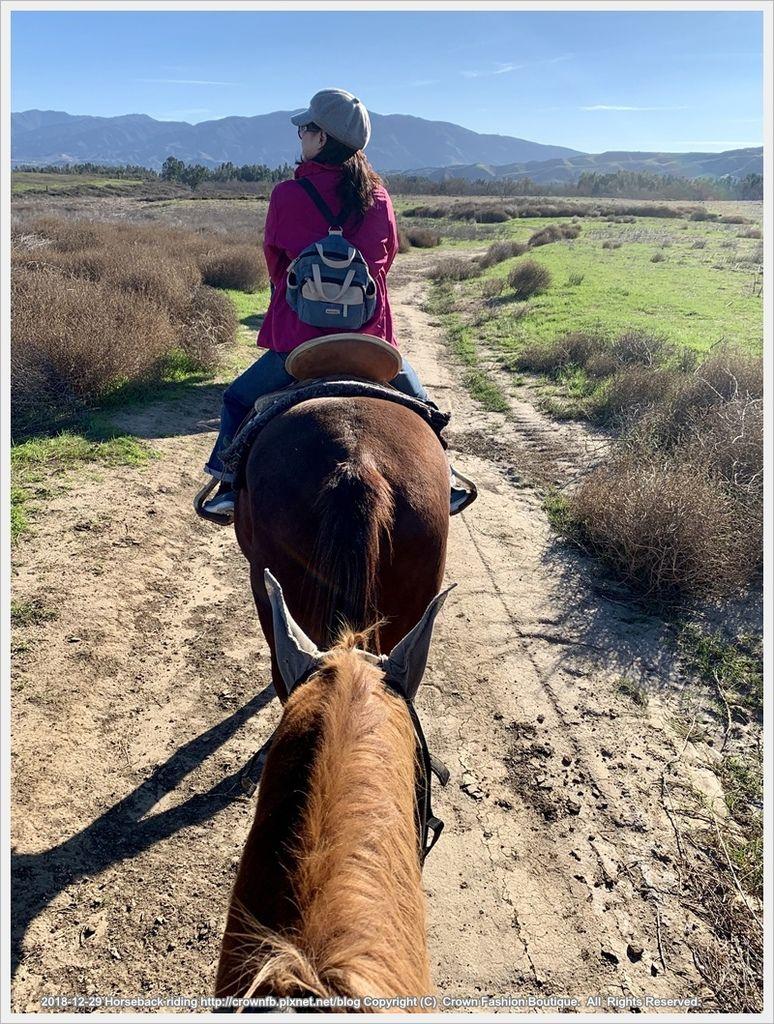IMG_6017Horseback riding.jpg