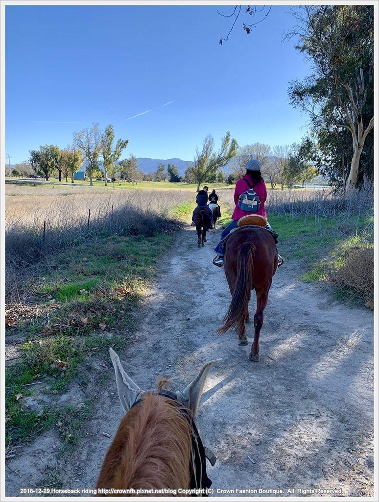 IMG_5955Horseback riding.jpg