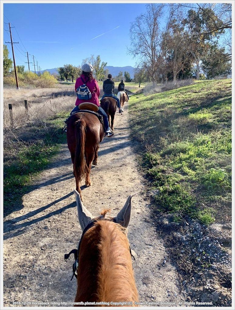 IMG_5948Horseback riding.jpg
