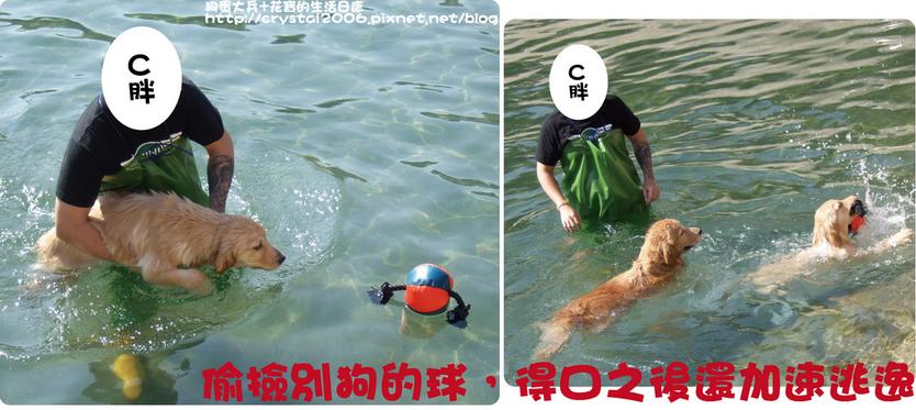大兵游泳-3.png