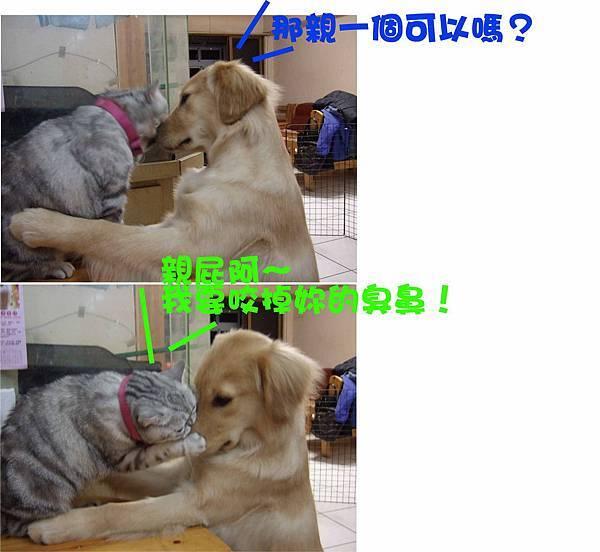 大兵糾纏狗蛋-7.jpg