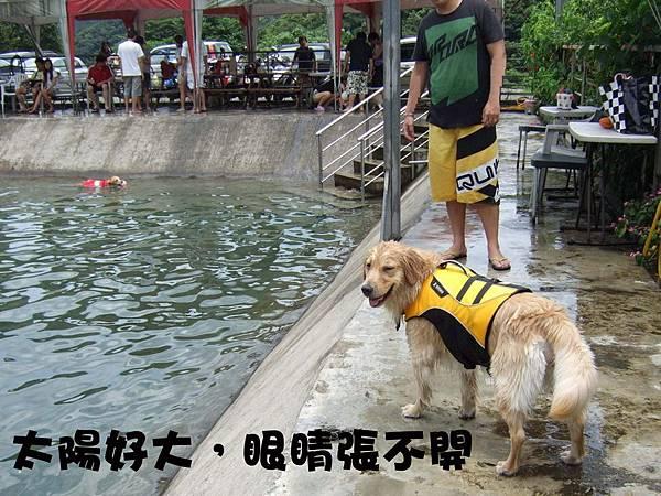 愛狗夢樂園-1.jpg