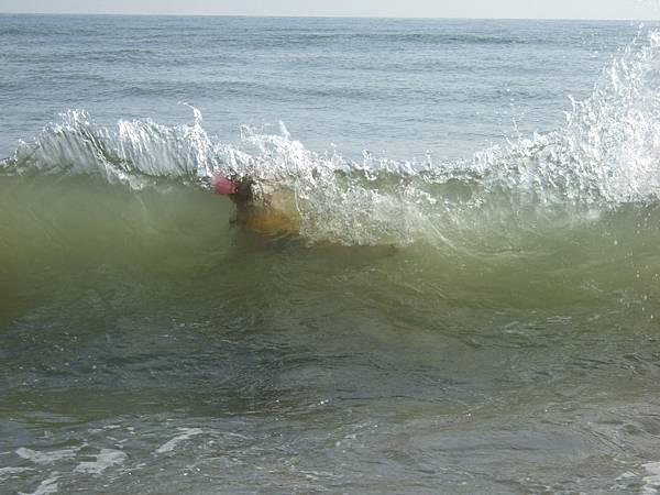 萬里海灘-3.jpg