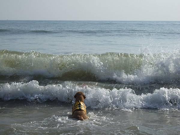 萬里海灘-4.jpg