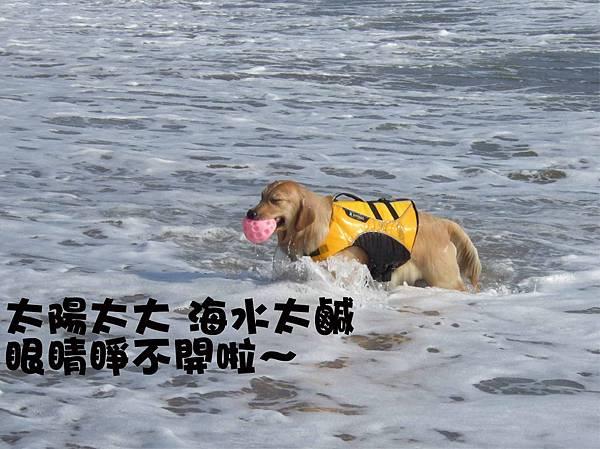 萬里海灘-6.jpg