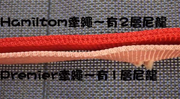 大兵的牽繩&項圈-9.jpg