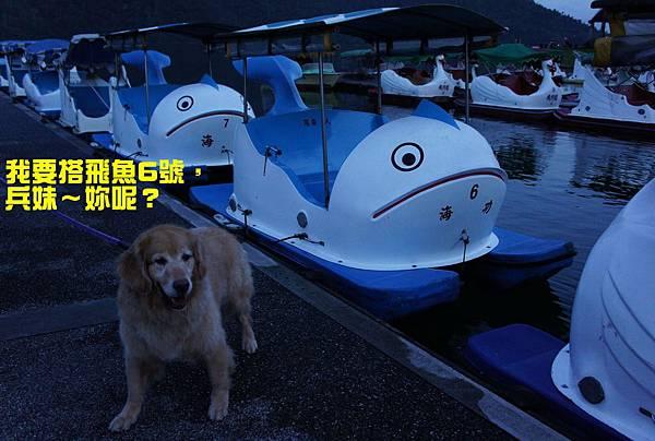 120718 鯉魚潭-7