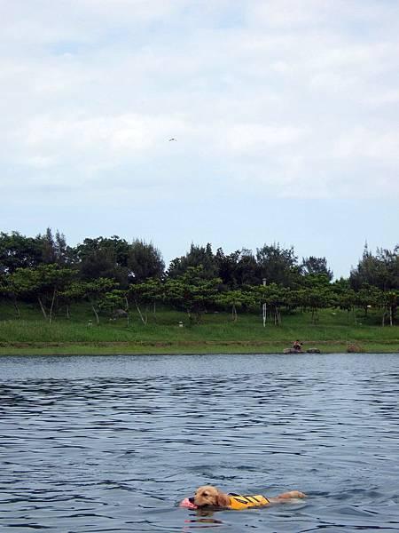 活水湖-3